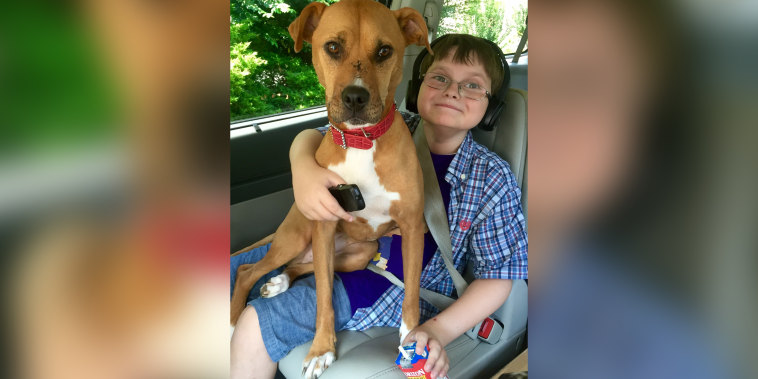 Linda Hickey's son Jonny has autism. He's pictured here with his beloved rescue dog, Xena.
