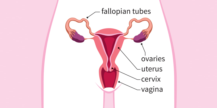 What is ectopic pregnancy? Signs and symptoms to look out for