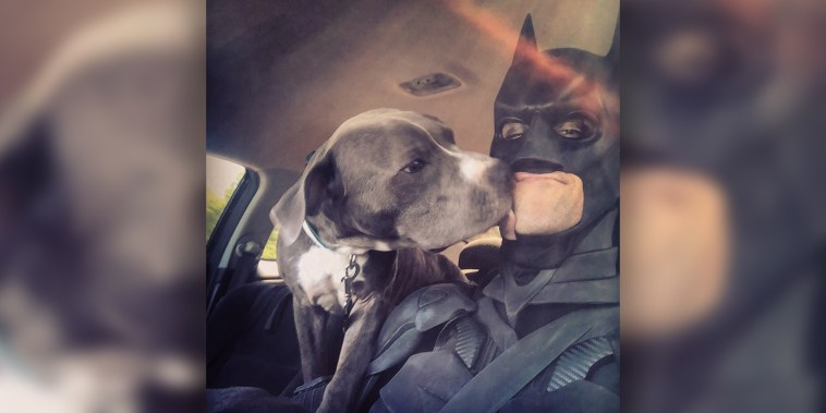 Batman returns - as an animal rescuer