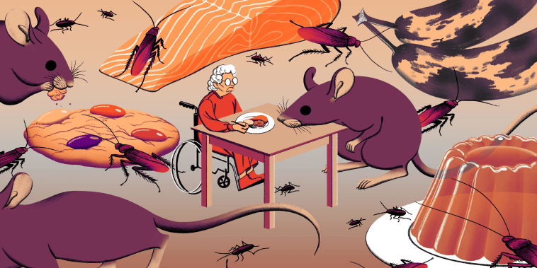 Illustration of old woman eating a meal while bugs and rodents crawl around her and food decomposes.