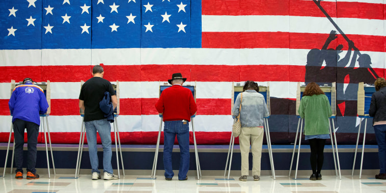 Image: Voters cast their ballots to vote in state and local elections at Robious Elementary School in Midlothian, a suburb of Richmond
