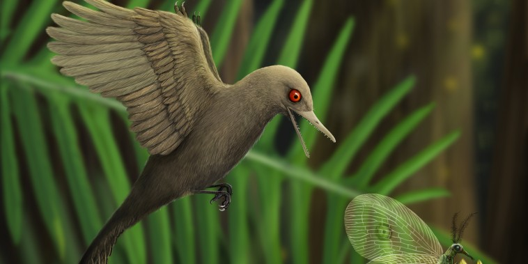 An artistic rendering of Oculudentavis imagining what it looked like preying on an insect.