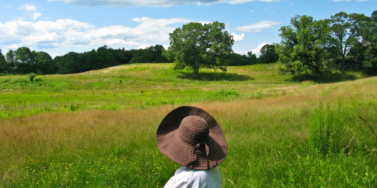 Woman looking at nature in a field