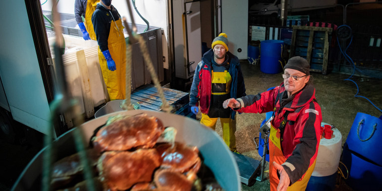 Image: Dartmouth Crab Company fishing vessel MFV William Henry II unloads crab catch for export to Portuga
