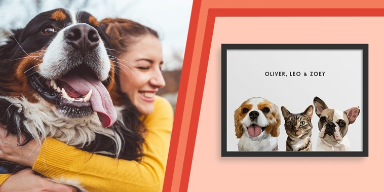 Illustration of a woman hugging her dog and a custom framed portrait of three dogs from West & Willow
