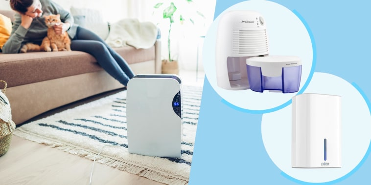 Illustration of a Dehumidifier with touch panel at home, while woman plays with cat, a Pure Enrichment PureDry Mini Dehumidifier and the Pro Breeze Electric Mini Dehumidifier