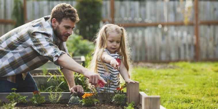 Father and daughter pointing on plant growing in raised bed