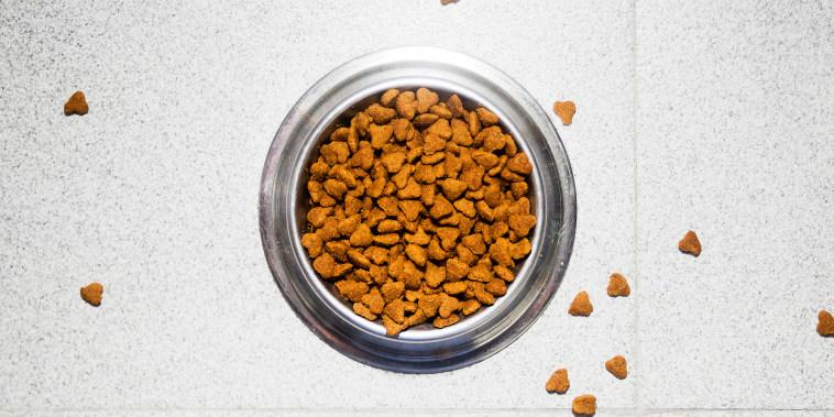 Pet dried food dish
