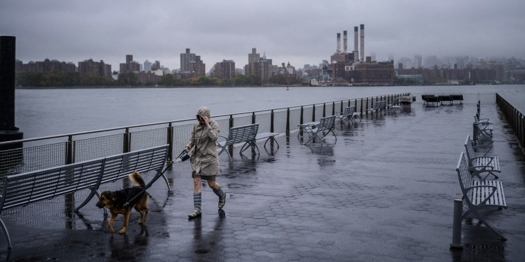 Image: A woman walks a dog before the manhattan city skyline in Brooklyn, N.Y., on Oct. 26, 2021.