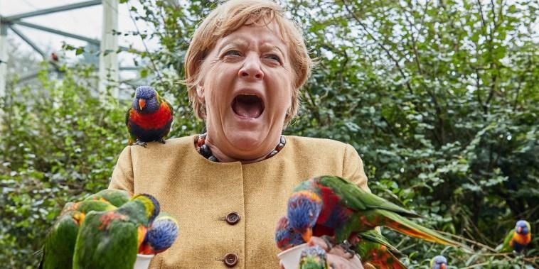 German Chancellor Angela Merkel feeds Australian lorikeets at Marlow Bird Park in Marlow, Germany, Thursday Sept. 23, 2021. (Georg Wendt/dpa via AP)