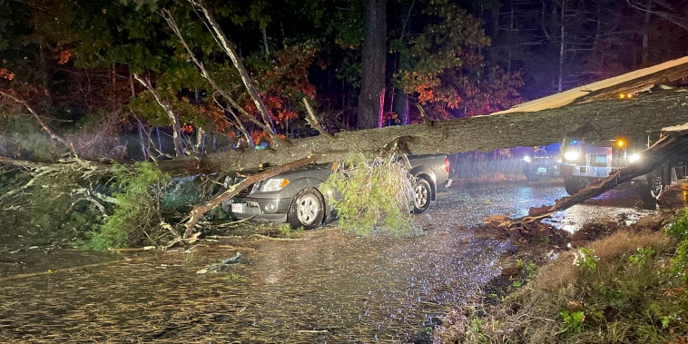 A car was crushed by a falling tree in Duxbury, Mass., overnight.