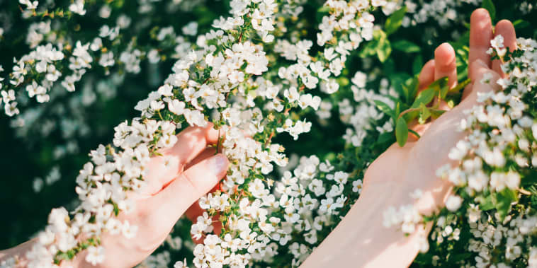 Woman reaching out for flowers