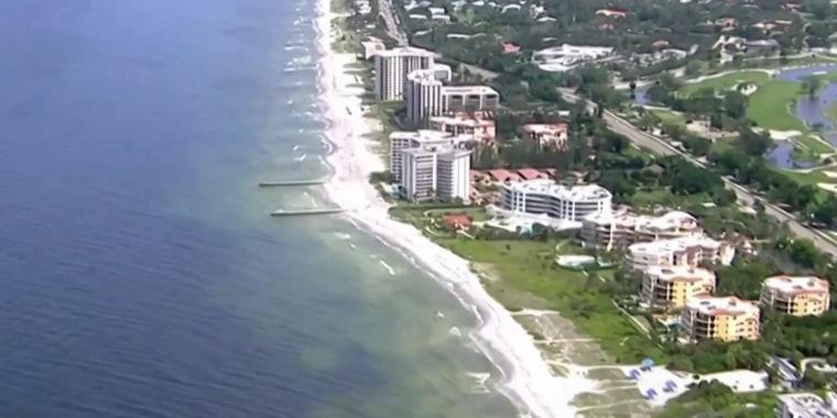 Toxic algae poses health risk for humans, wreaks havoc on Florida wildlife