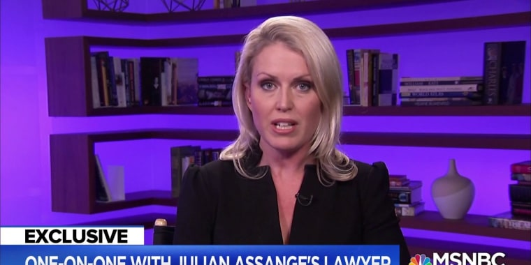 EXCLUSIVE: Lawyer for WikiLeaks founder Julian Assange Speaks Out on possible criminal charges
