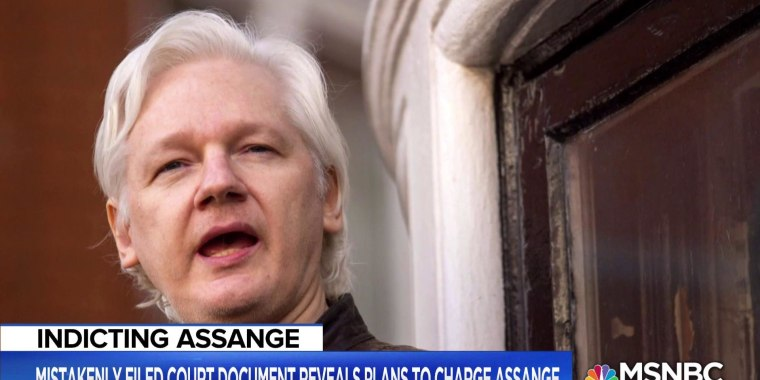 What could the accidental filing about Julian Assange mean for the Russia probe and Trump?