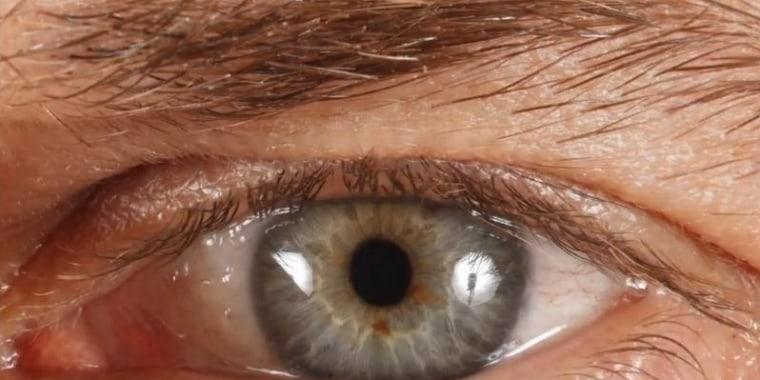 A close-up of one subject's eye — and you can zoom much more than this.