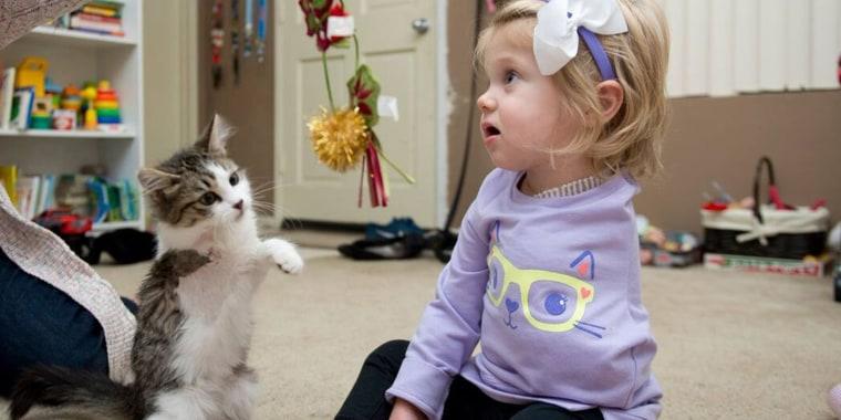 amputee-girl-kitten-today-160106-tease