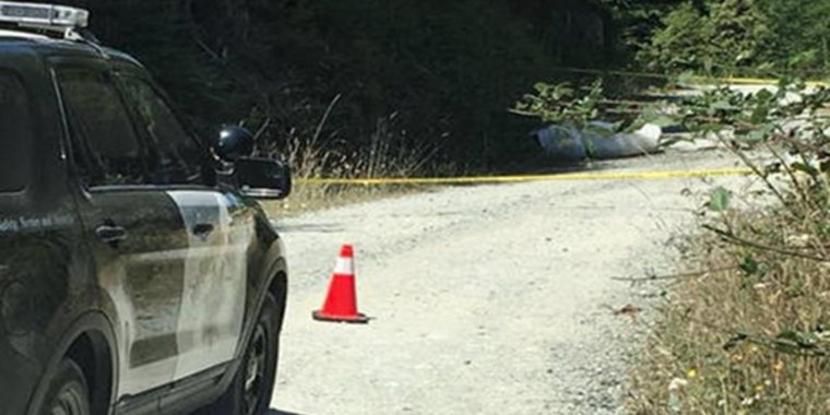 A small medical plane crashed in Humboldt County on Friday, killing at least two people.
