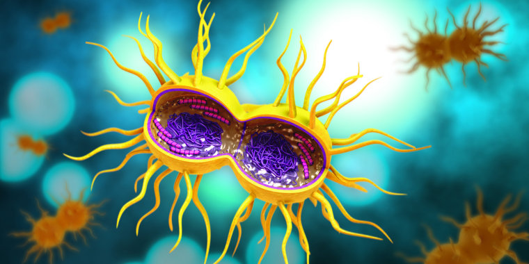 A cartoon showing a gonorrhea bacterium