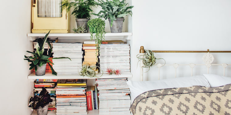 pleasurable low maintenance house plants.  Why Indoor Plants Make You Feel Better