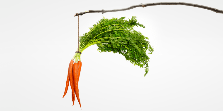 Carrots Dangling From A Stick