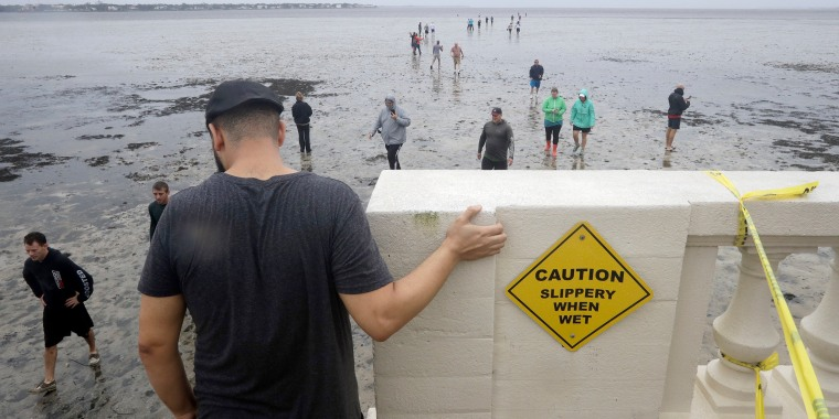 Image: People walk out onto what is normally four feet of water in Old Tampa Bay on Sept. 10. Hurricane Irma and an unusual low tide pushed water out over 100 yards.