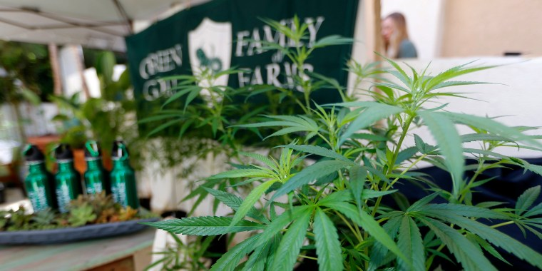 """Image: Marijuana plants are displayed at the Green Goat Family Farms stand at """"The State of Cannabis"""""""