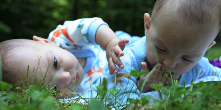 Image: Babies in the grass