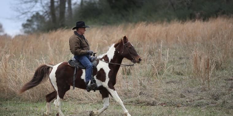 Image: GOP Senate Candidate Judge Roy Moore Arrives At Polling Station To Vote By Horseback