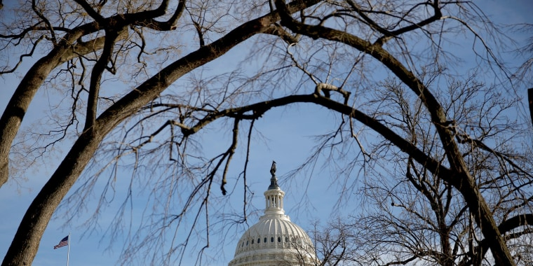 Image: The U.S. Capitol is seen from behind trees after President Donald Trump and the U.S. Congress failed to reach a deal on funding for federal agencies in Washington, DC, on Jan. 20, 2018.