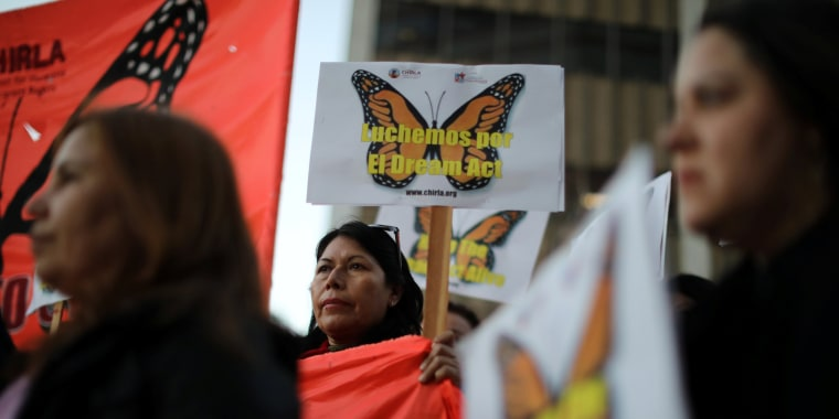 Image: People protest for immigration reform for DACA recipients and a new Dream Act in Los Angeles