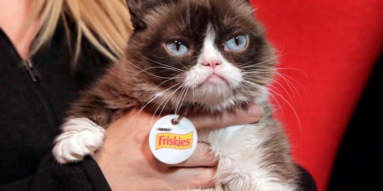 Image: Grumpy Cat
