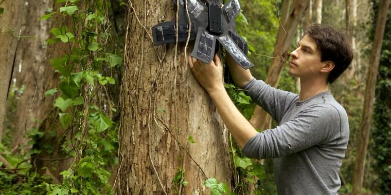 Image: Rainforest Connection