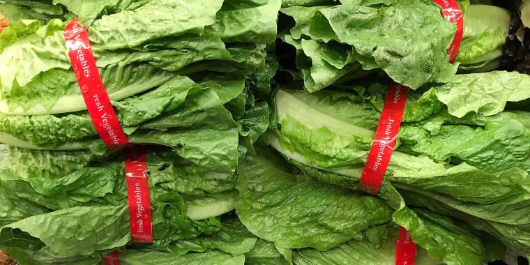Image: Romaine Lettuce E Coli Outbreak