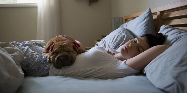 best anti-allergy mattress cover