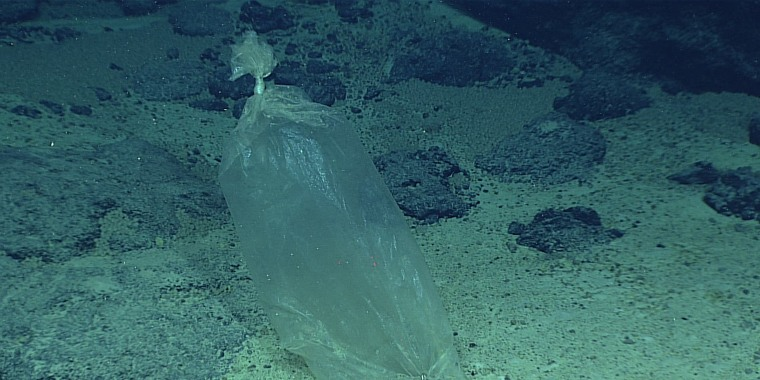 Image: Mariana trench plastic bag