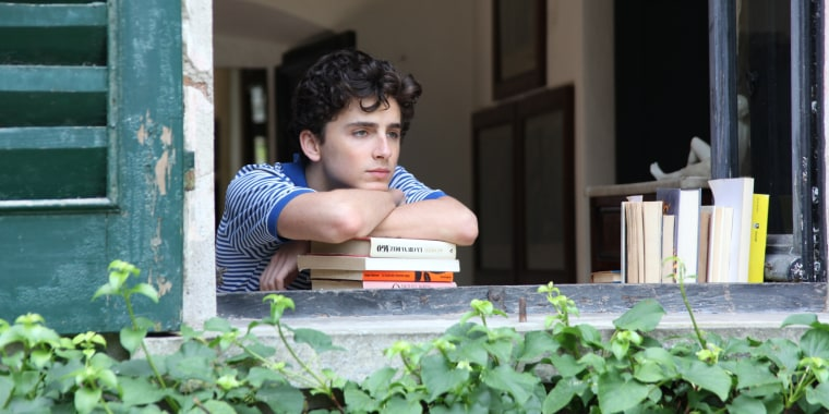 """Image: Timothee Chalamet in a scene from """"Call Me By Your Name"""""""