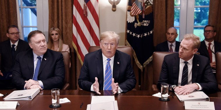 Image: Trump speaks during a cabinet meeting