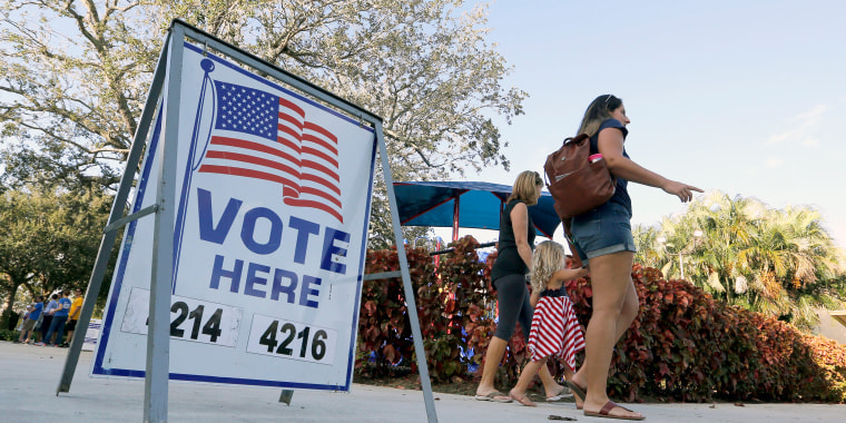 Image: Florida Voters Cast Their Ballots In State's Primary