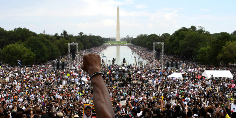 Image: Protest at Lincoln Memorial