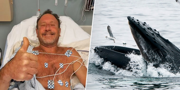 Michael Packer, left and a whale off Cape Cod.