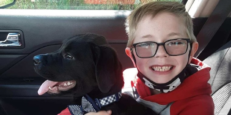 Kimberly Woodruff's 8 year old son Bryson sold Pok?mon cards to help pay his dog Bruce's medical bills.