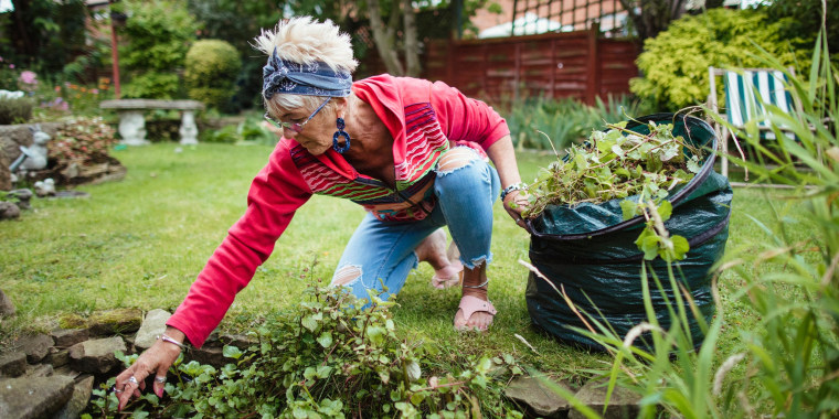 Senior woman gathering weeds and garden waste in her compost bag
