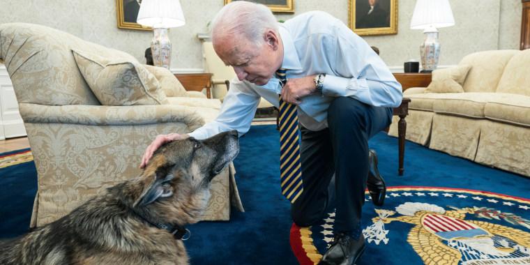 President Joe Biden pets the Biden family dog Champ in the Oval Office.