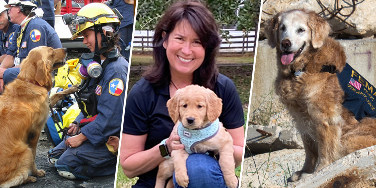 Pictured from left to right: Denise Corliss with search dog Bretagne at ground zero in New York City in September 2001; Corliss with Finn, Bretagne's little sister, in 2020; Bretagne working at a disaster training site for dogs in Texas in 2014.
