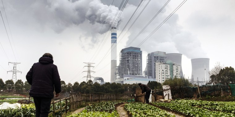 People tend to vegetables growing in a field as emission rises from cooling towers at a coal-fired power station in Tongling, Anhui province, China, on Jan. 16, 2019.