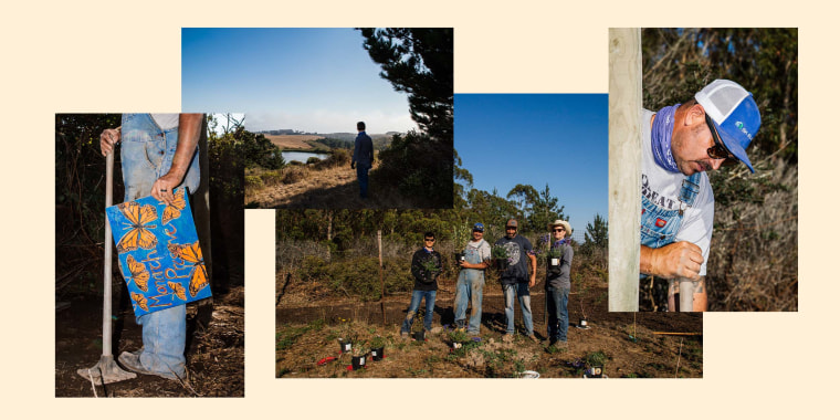Images from Ole Schell's butterfly preserve on his ranch in Bolinas, Calif.