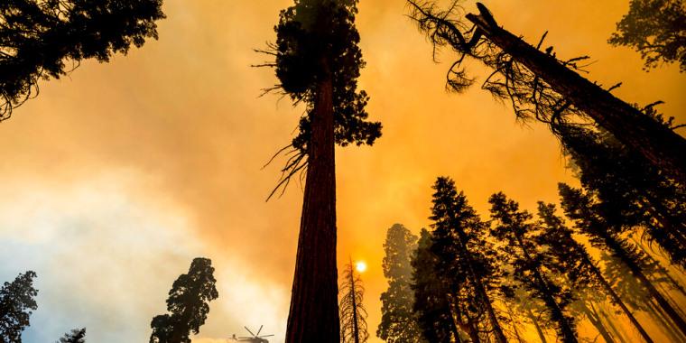 El incendio en el Parque Nacional Sequoya, el 19 de septiembre de 2021.