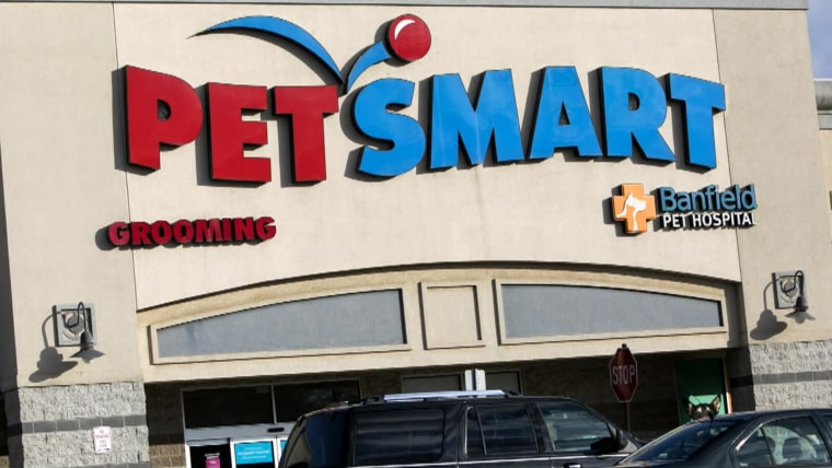 Petsmart Facing Allegations Of Mistreating Animals During Grooming