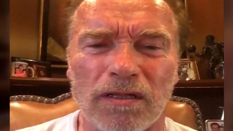 Arnold Schwarzenegger Says Donald Trump Acted Like A Little Wet Noodle Like A Fanboy With Putin